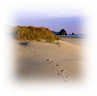 Footprints in sand - God is always with us!